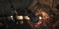 Серию игр Tomb Raider ждет перерождение