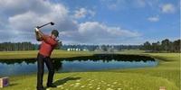 Tiger Woods пройдет мимо PSP?